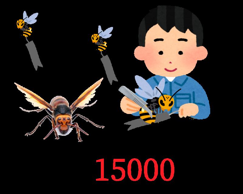 蜂の調査料金