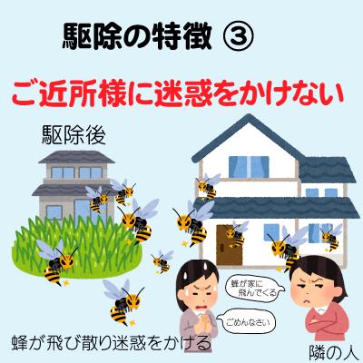 ハチ 退治003
