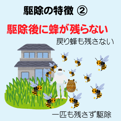 ハチ 退治002